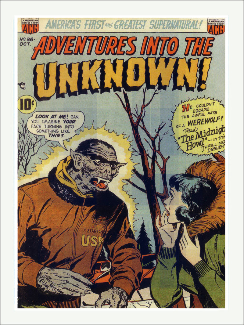 Adventures into the Unknown Comics