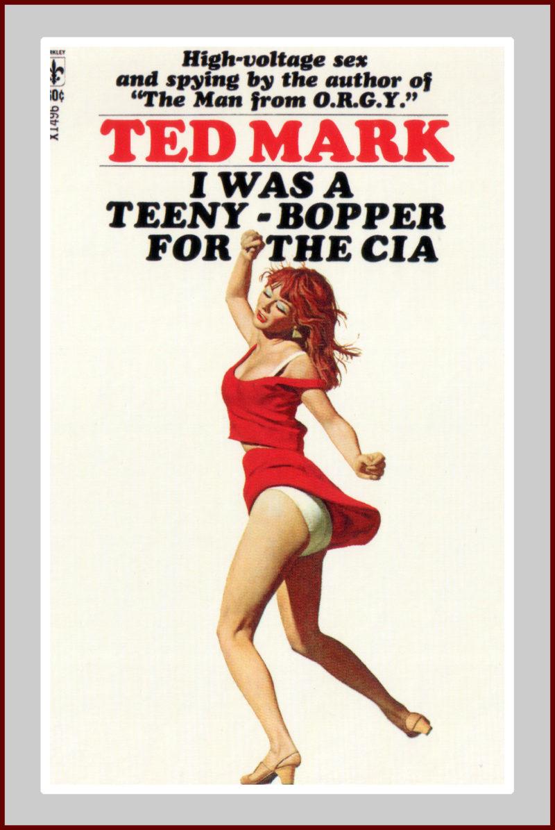Teeny Bopper for the CIA Novel