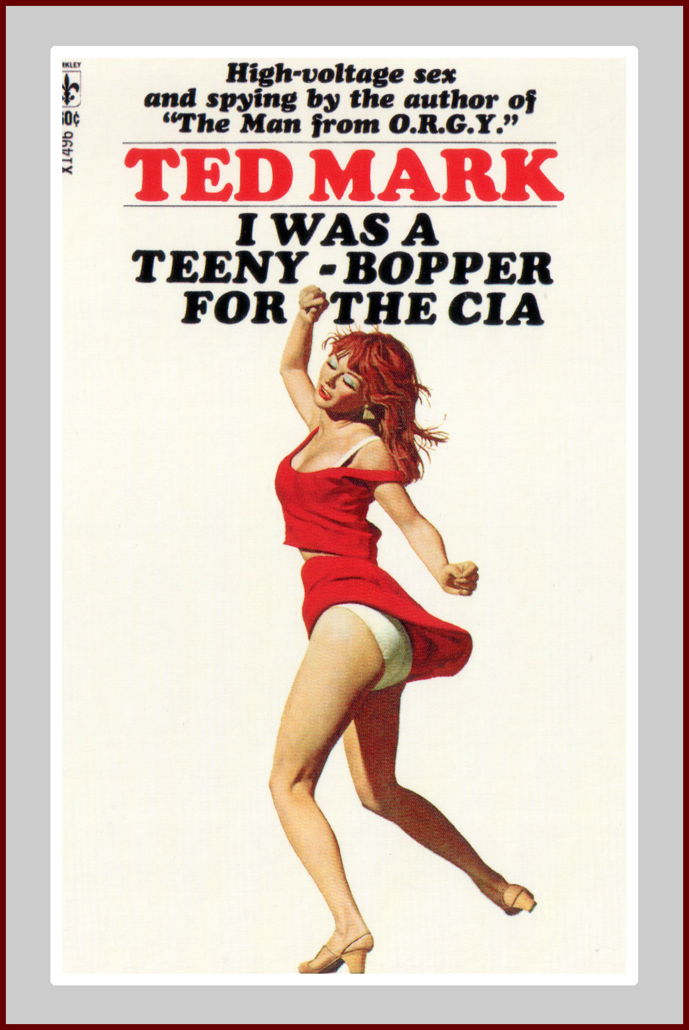 Teeny Bopper for the CIA Novel
